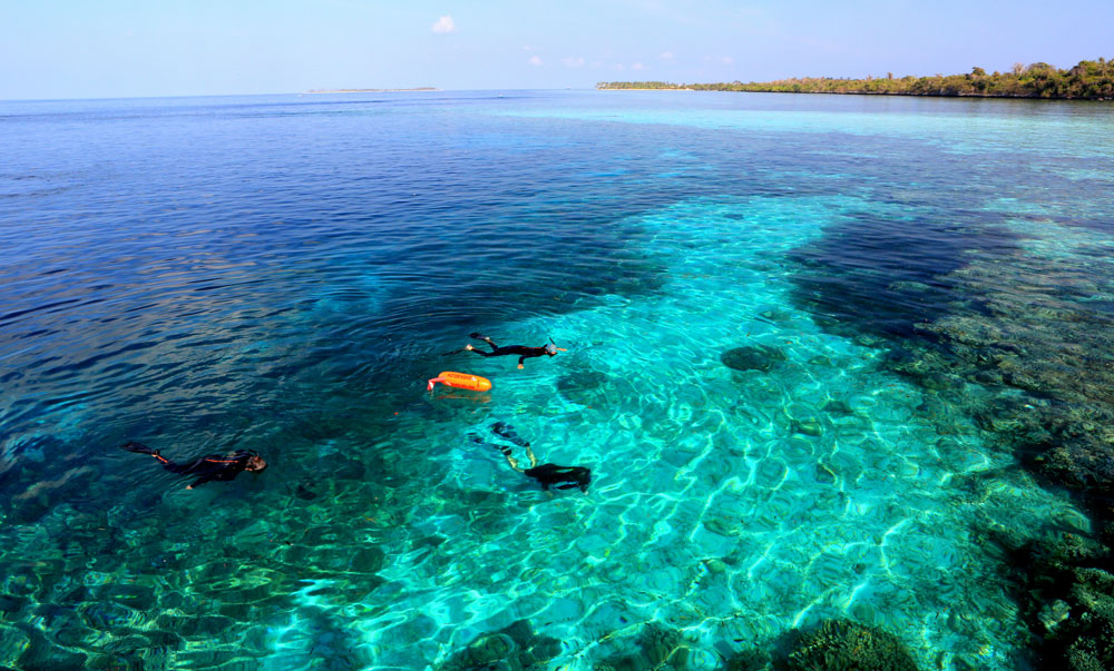 Snorkelers enjoying the reefs at Wakatobi.