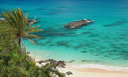 Complete oahu snorkeling guide recommended spots tours for Fishing spots oahu
